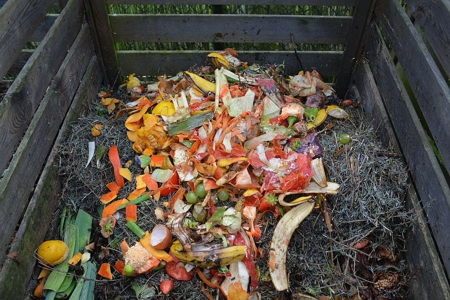 COMPOSTING IN THE COVID-19 ERA